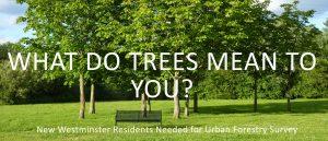 URBAN FOREST TREE SURVEY DEADLINE: June 30th @ Quayside Community